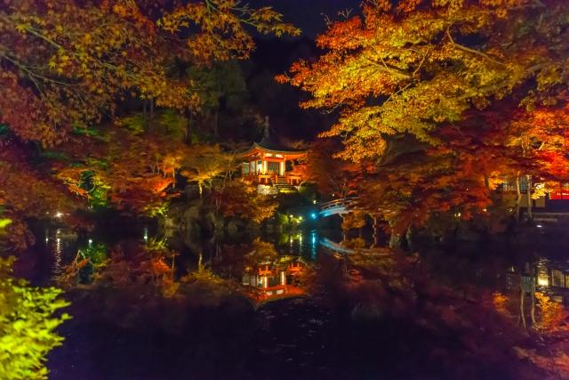 醍醐寺紅葉ライトアップ