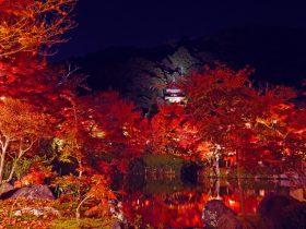 永観堂紅葉ライトアップ